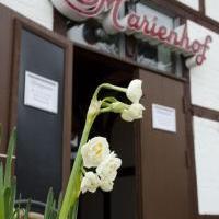 Marienhof - Bild 3 - ansehen