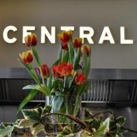 Central - Bild 12 - ansehen