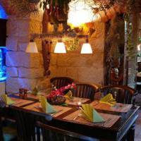 Erlebnisrestaurant Tarsius Welt - Bild 2 - ansehen