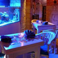 Erlebnisrestaurant Tarsius Welt - Bild 3 - ansehen