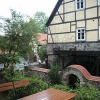 Zschoner Mühle - Bild 5 - ansehen