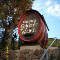 """Sächsischer Weinkeller """"Am Goldenen Wagen"""" - Bild 7 - ansehen"""