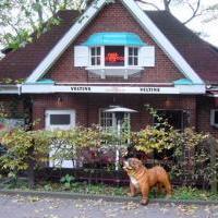 Red Dog Bar & Café in Hamburg auf restaurant01.de