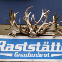 Raststätte Gnadenbrot in Berlin auf restaurant01.de
